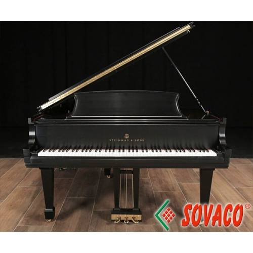 Piano Steinway & Sons M